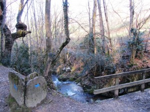 Day_3_Witchs'_Trail_bridge